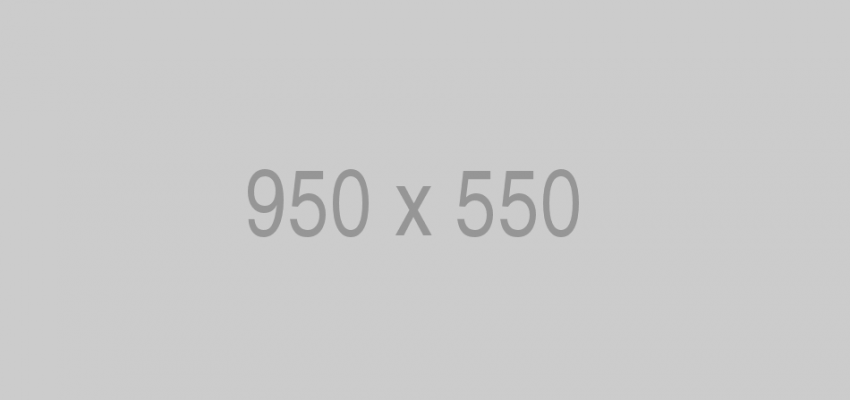 950×550